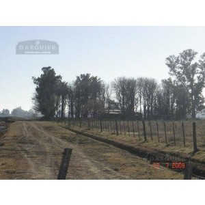 Chacra Ranchos 22,5 HA