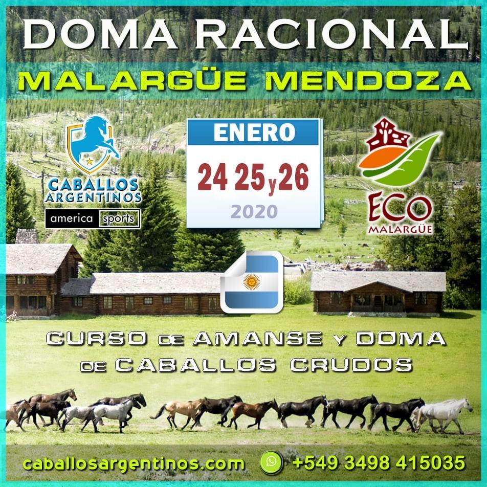 Curso de amanse y doma racional en Malargue Mendoza